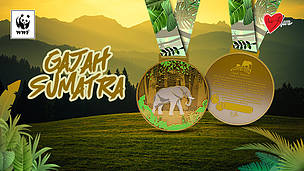 Gajah Sumatra Run & Ride